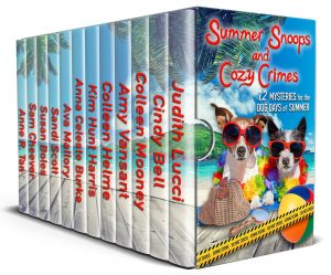 "Interview: Cozy Mystery Author Sandi Scott of ""The Seagrass Sweets"" Mysteries"